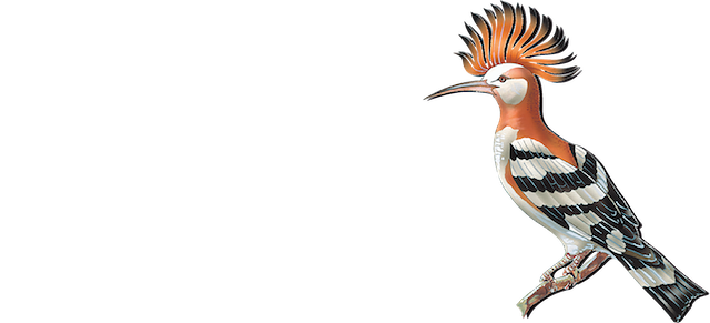 El Paraiso Golf Club logo _ blanco